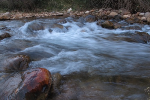 Bright Angel Creek flowing through the campground.