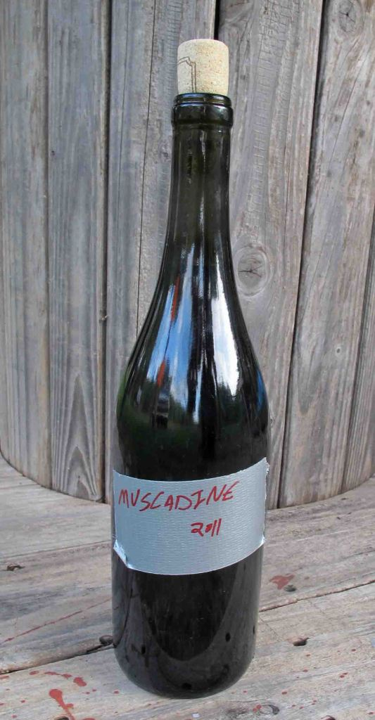 Muscadine Wine from the Ozark Mountains
