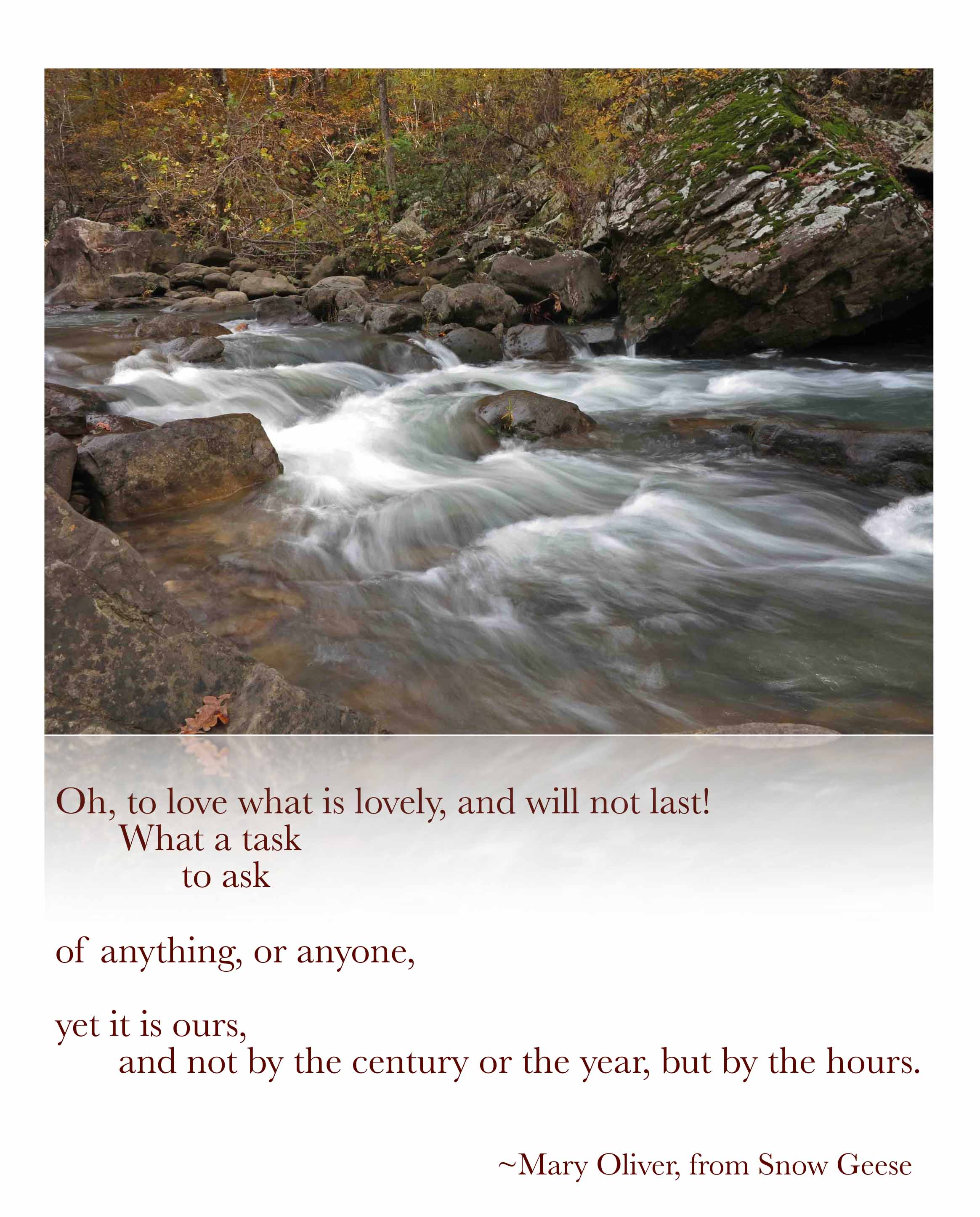 Mary Oliver Ozarkmountainhiker