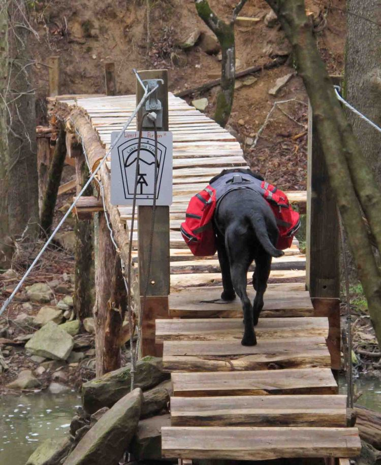 Crossing Little Frog Bayou with two days of dog food in her backpack.
