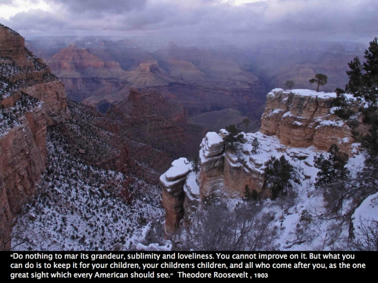 Grand Canyon Roosevelt quote.001