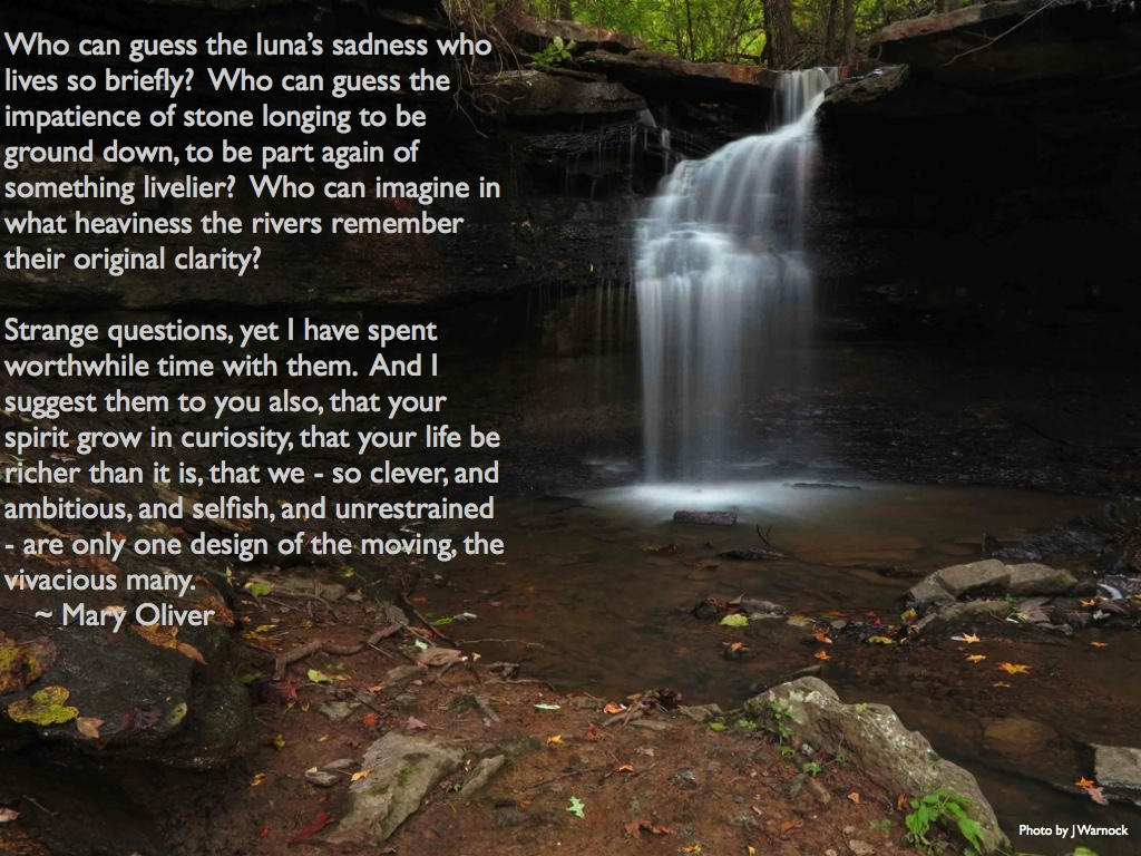 Quotes Poems And Personal Writing Ozarkmountainhiker