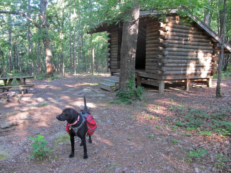 Brown Creek Shelter