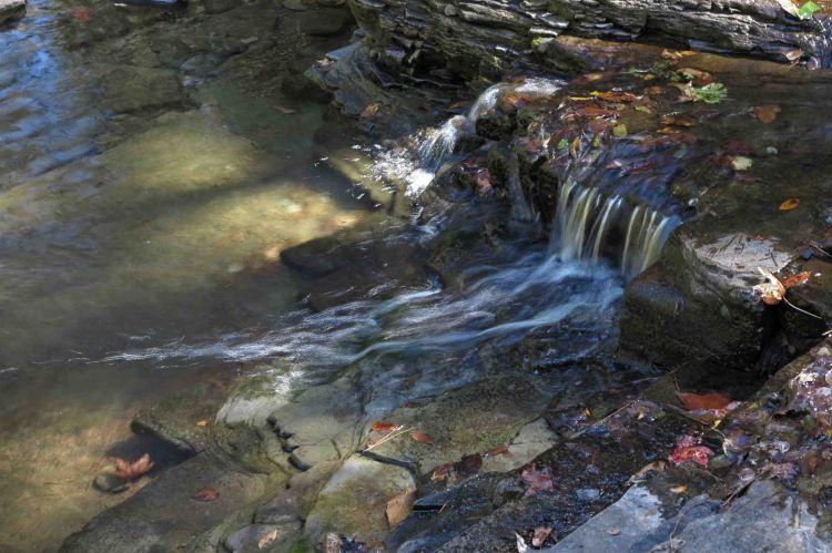Fane Creek