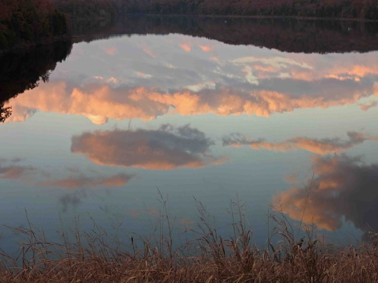 """I liked this view of the clouds as the sky """"converged"""" with the grassy shore and turned my view of the lake upside-down."""