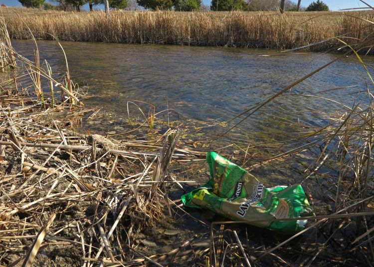 Some trash is unsightly but easily corrected.  The deeper problem of pollution that finds its way into our  wetlands is not so easily remedied.