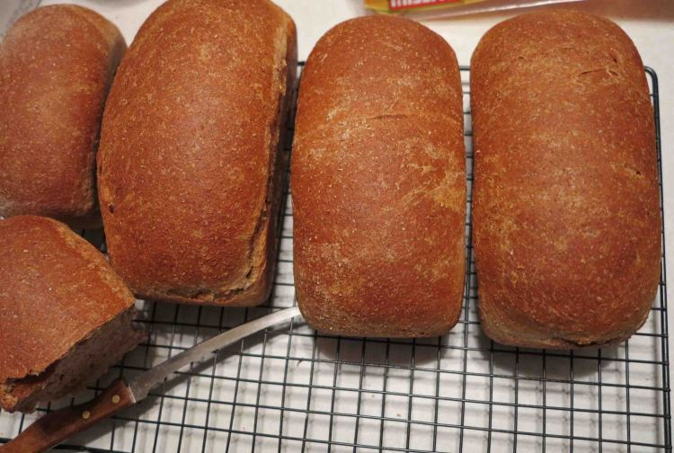 David's bread