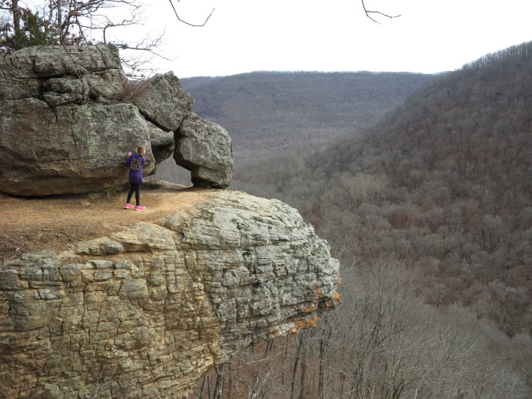 Bluff in the Buffalo River area of Arkansas.