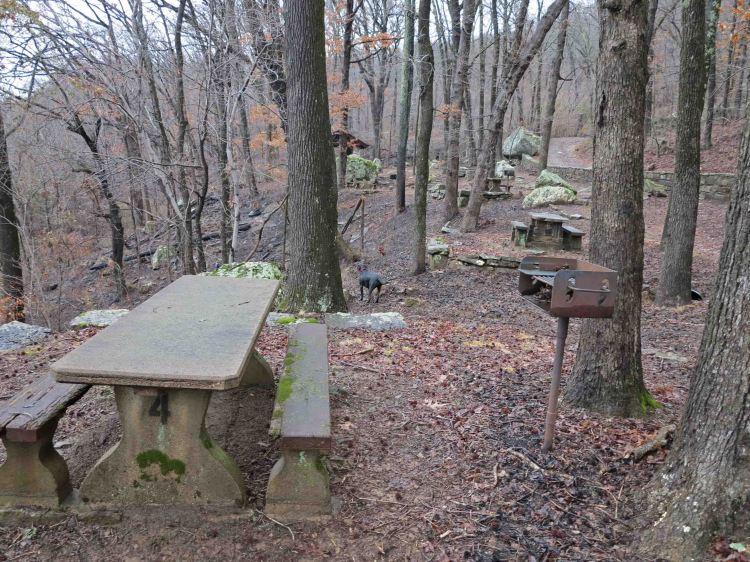 Gray Spring picnic area.