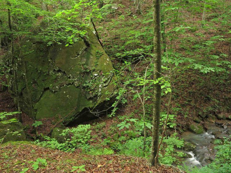 Large boulder across Briar Branch