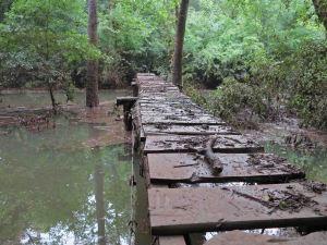 Little Frog Bayou Bridge