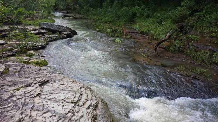 Jack Creek 3