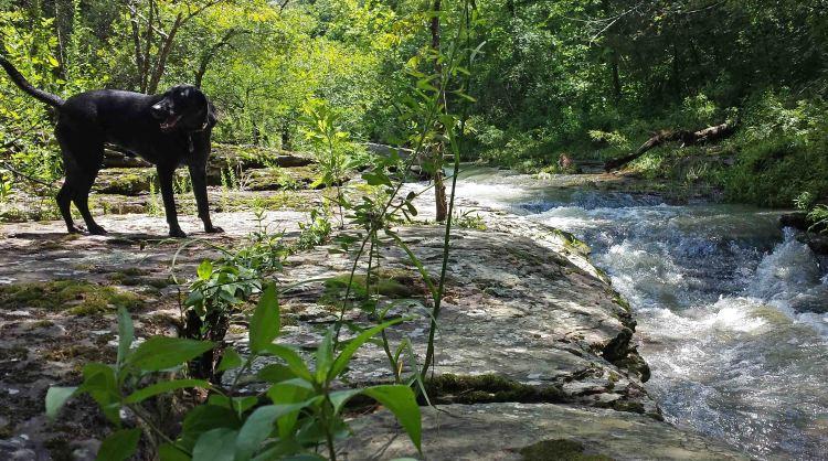 Hiker enjoying the water