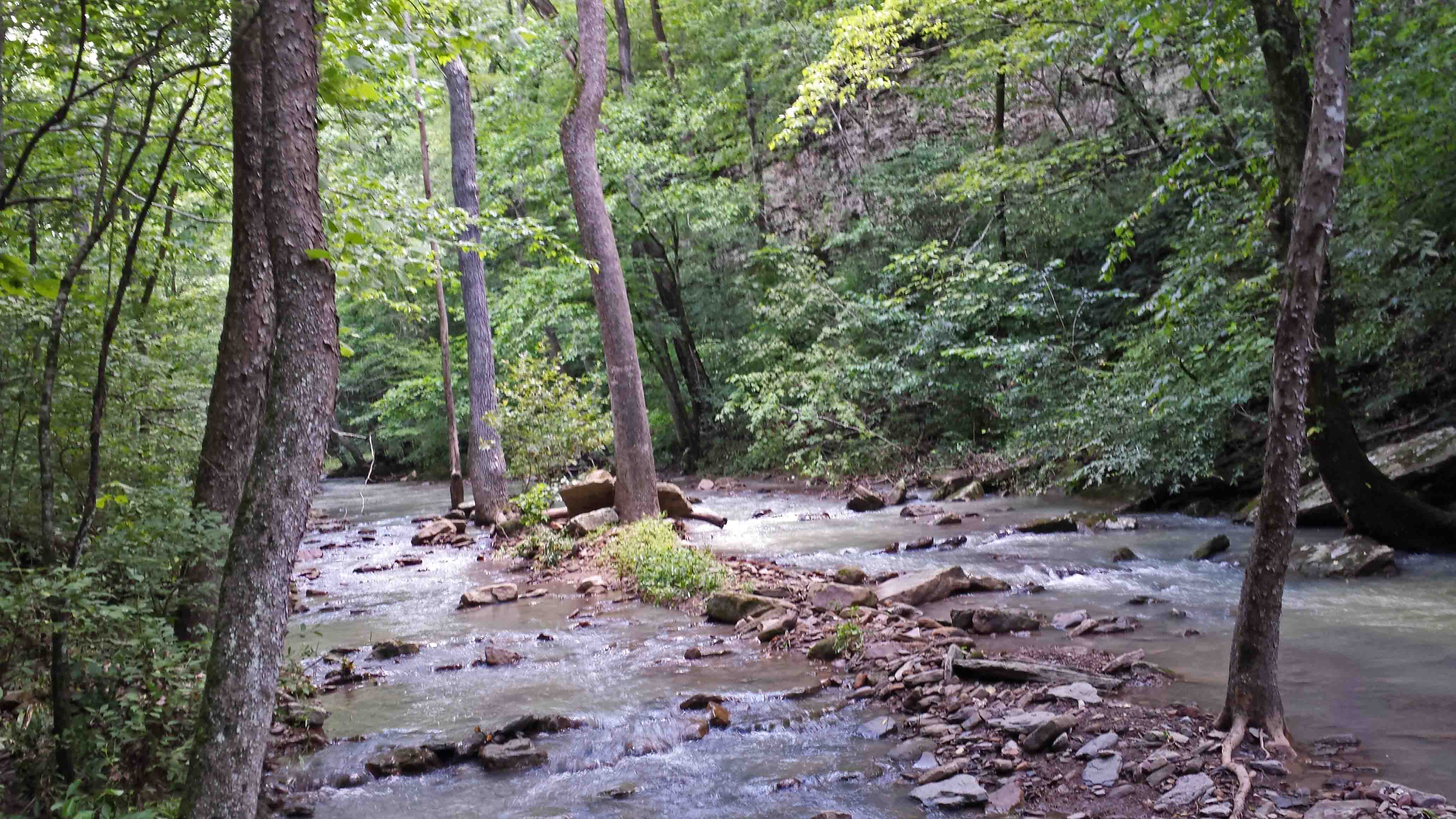 the homestead on rainy mountain creek Get access to the way to rainy mountain essays only from anti essays rainy mountain creek in the essay the homestead on a rainy mountain creek.