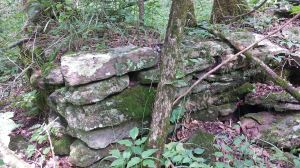 Evidence of old homestead next to Jack Creek