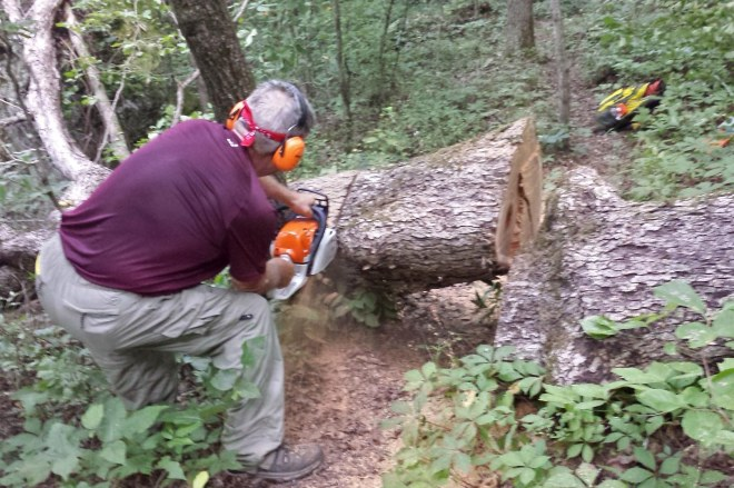 Mike cutting the first tree encountered.