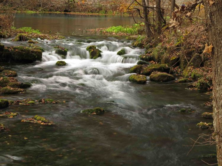 Story Creek fed by Alley Spring