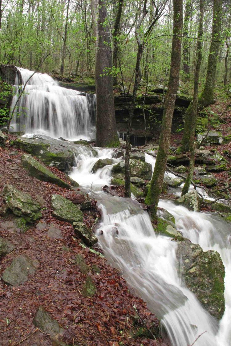 Turner Bend Falls Warnock 2 small