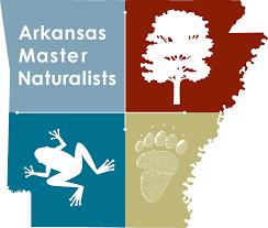 Ark Master Nat logo