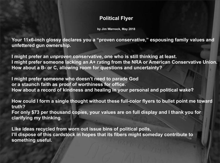 Political Flyer0518