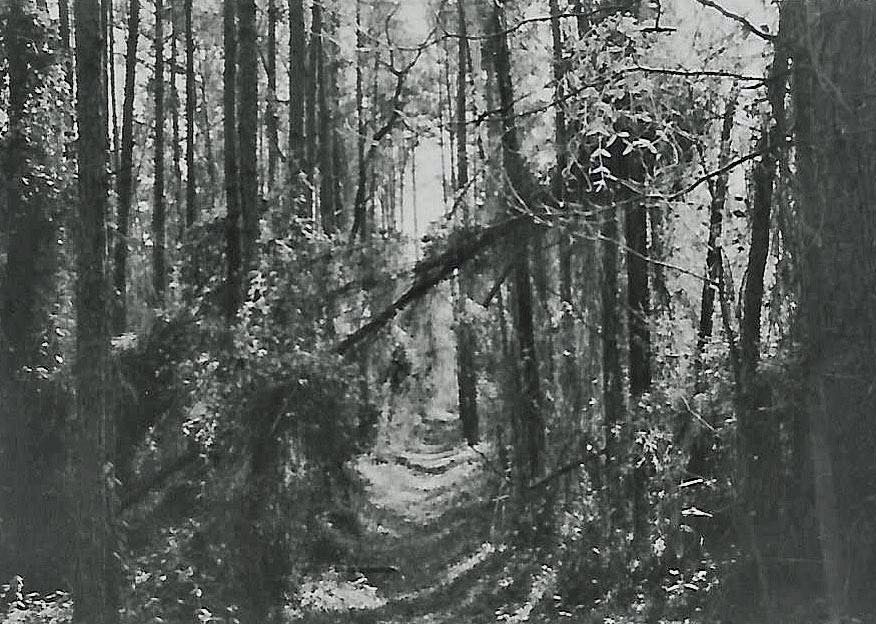 Charokee Trailr