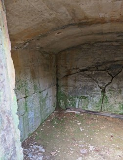 interior walls of root cellar