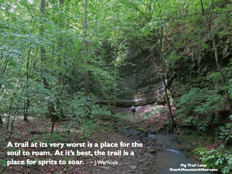 PigTrailLoop quote.001